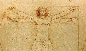 c_300_200_16777215_00_images_Bilder_Artikelbilder_Da_Vinci_Vitruve_Luc_Viatour-Ausschnitt-320x180.jpeg